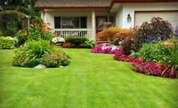 Lawn care services , Mississauga and Brampton