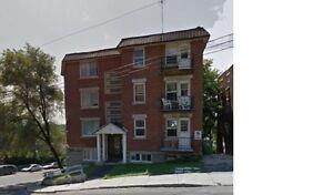 Appartement apartment - Promo $525 LAST CHANCE -