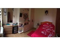 Double room available ASAP