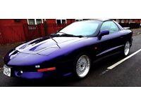 Pontiac Firebird Trans AM 5.7 Superb Example For Sale (1997)