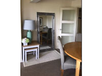 **HAMPSHIRE LEANER LARGE SILVER MIRROR 170 X 84 CM** extra x - wall - floor - originally £250