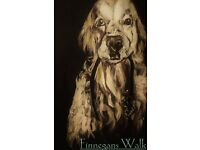Finnegans Walk: Dog Walking Service