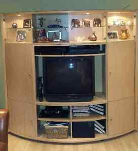 Media cabinet - LOCAL GTA BUYERS / CASH ONLY Oakville / Halton Region Toronto (GTA) image 2