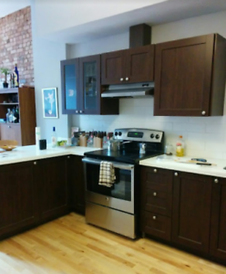 Professionally Renovated /1 Bedroom / Prime Location