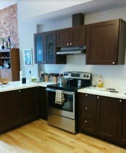 Professionally Renovated /1 Bedroom / Prime Location