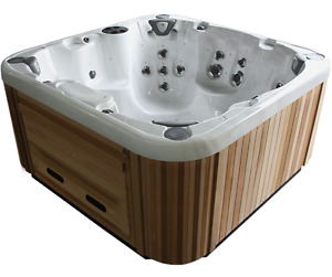 Coast Spas Hot Tubs starting from $11595 *options extra