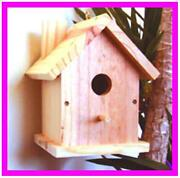 Birdhouse Lot