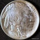 Philadelphia Ungraded 1913 Year US Buffalo Nickels (1913-1938)