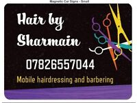Mobile hairdresser over 19 years experience
