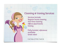 Cleaning & Ironing Services Hedge End