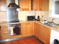 Very large room in fabulous flat share near transport in Croydon