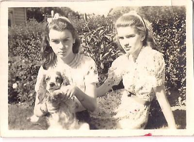 Pretty Hair Bow Tween Teen Girls & King Charles Spaniel? Puppy Dog Photo](Pretty Tween Girl)