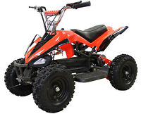 Mini Sasquatch ATV 500W great for kids 6 and up!