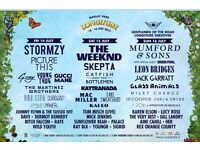 Longitude festival VIP Saturday & Sunday ticket