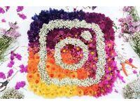 Social Media Marketing Management for your brand   Instagram   Facebook   Twitter