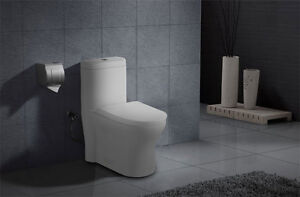 Dual Flush Siphonic One-piece Toilet