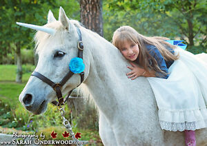 Unicorn mini photo sessions, October 9th!