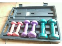 Hand weights dumbbell set in case