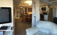 Walk out Basement Furnished Suite for Rent
