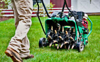 Lawn maintenance  / lawn cutting / Spring clean up