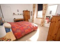 Festival let: Newington Double room
