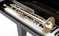 Piano lessons or trumpet lessons