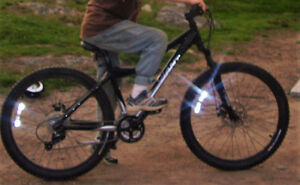 TWO MOUNTAIN BIKES TAKEN FROM CRESCENT BEACH