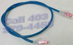 4foot ethernet cable Cat6, blue or white