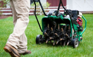 AERATION, FERTILIZATION, OVERSEEDING + SOIL AND MULCH DELIVERY