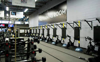 The Training Room - Home of Barrie's best trainers!