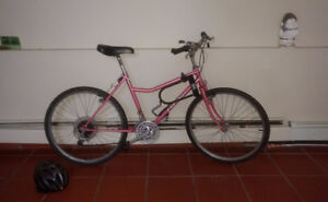 $100 reliable commuter bike