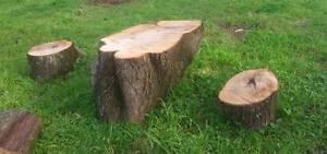 stem stool for sale Rostrevor Campbelltown Area Preview