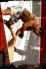 Vitor Belfort 2010 Mixed Martial Arts (MMA) Trading Cards