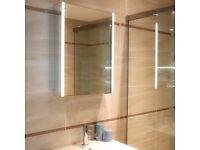 Multi Function Mirror Cabinet