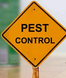 Pest control rat and mice