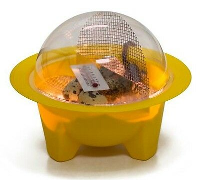 GQF 9100 Chick-bator Mini Dome Incubator Science 4H Project Chicken Hatching Egg