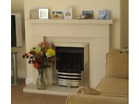 Gazco Arts Fire with Brushed Steel Effect Frame
