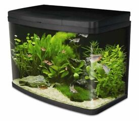 BNIB LOVE FISH PANORAMA AQUARIUM 64 LITRE FISH TANK LED LIGHTING RRP£210
