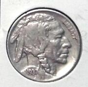 Buffalo Nickel Full Horn