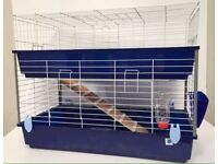 Guinepigs and large cage