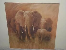 Picture of elephants on canvas 20 inch by 20 inches