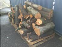 Beech wood logs firewood large amount