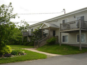 2 Bedroom in Bedford Available May, 2017