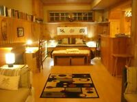 Beautiful Bachelor Suite for rent near Fleming College