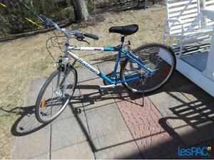 Vélo hybride Raleigh