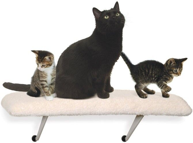 Lazy Pet Multi-Cat Window Perch Window Seat Kitten Kitty Sill NEW