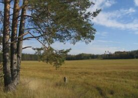 Land for sale in Latvia