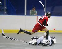 Goalie needed for Monday Ball hockey 8-10 Napean region
