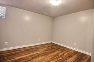 Beautiful 2 bedroom, steps away from the Grand River Cambridge Kitchener Area image 4