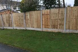 🌈New Flat Top Feather Edge Fence Panels • Excellent Quality • Wooden • Pressure Treated